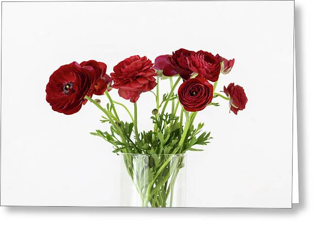 Greeting Card featuring the photograph Red Ranunculus by Kim Hojnacki