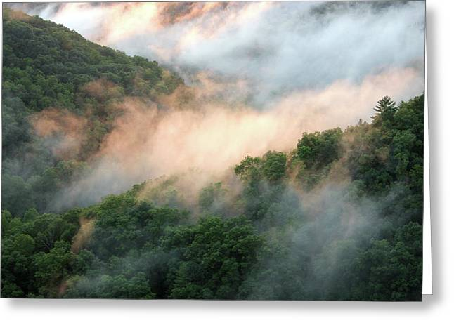 Red River Gorge Kentucky Fog In Mountains At Sunset After A Storm Greeting Card by Design Turnpike
