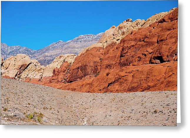 Red Rock Canyon Greeting Card by Rae Tucker
