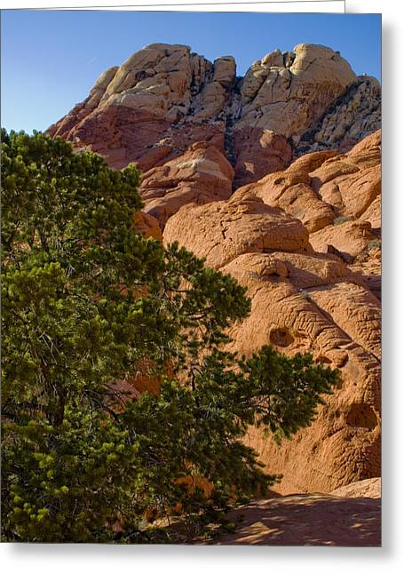Rock Texture Greeting Cards - Red Rock Textures Greeting Card by Chris Brannen
