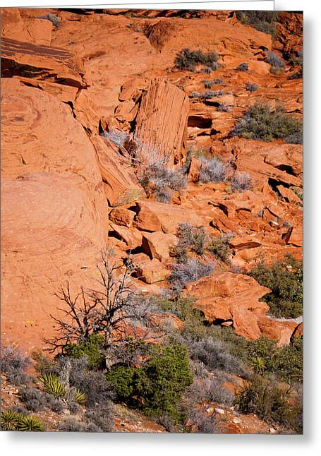 Red Rocks Greeting Card by Rae Tucker