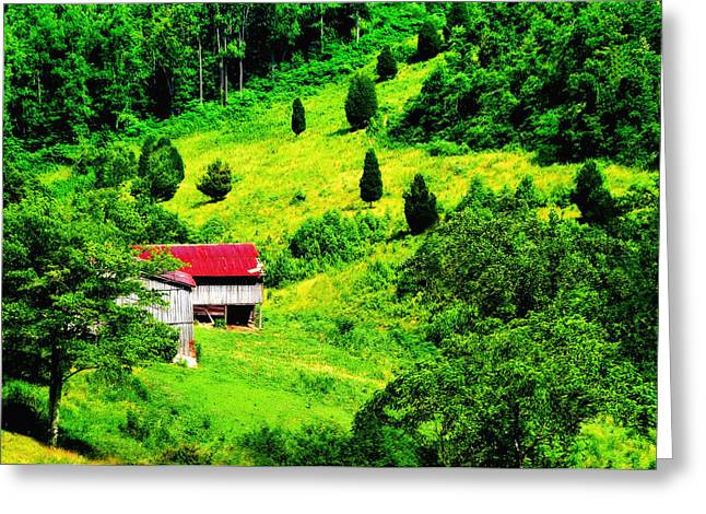 Red Roof Greeting Card by Lyle  Huisken