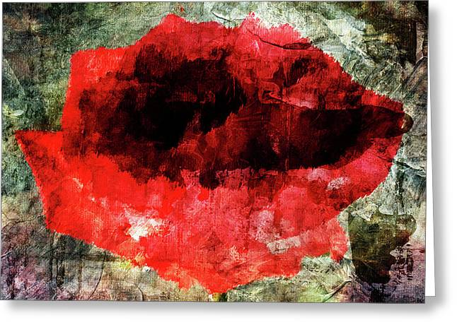 Red Rose Greeting Card by Andrea Barbieri