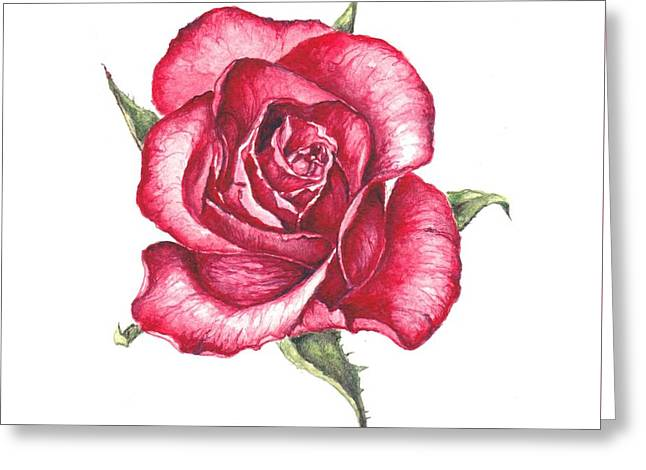 Greeting Card featuring the painting Red Rose by Heidi Kriel