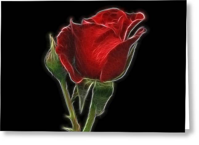 Red Rose II Greeting Card by Sandy Keeton