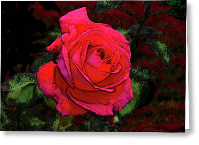 Red Rose Greeting Card by Joe Halinar