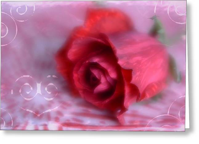 Greeting Card featuring the photograph Red Rose Love by Diane Alexander