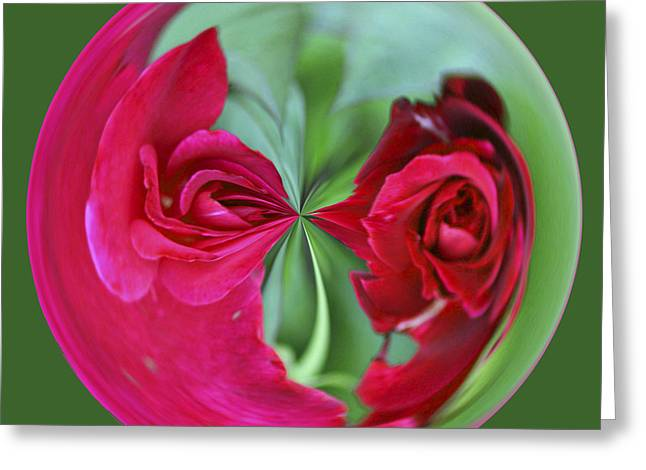 Greeting Card featuring the photograph Red Rose Orb by Bill Barber