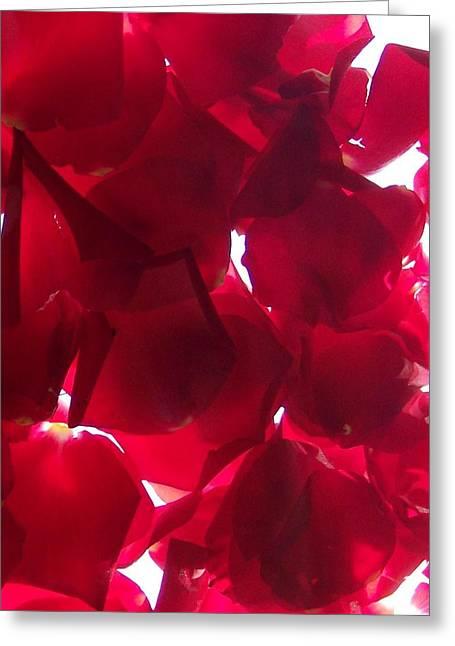 Anna Villarreal Garbis Greeting Cards - Red Rose Petals Greeting Card by Anna Villarreal Garbis
