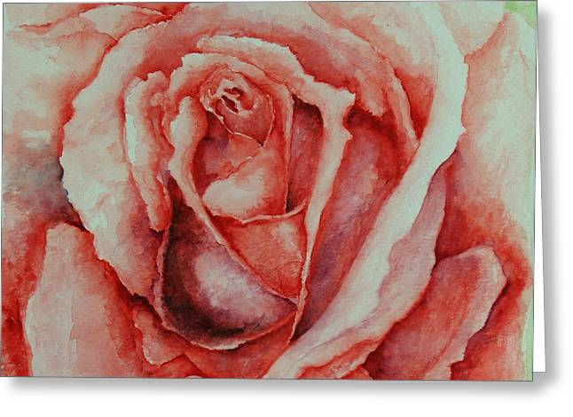 Red Rose Greeting Card
