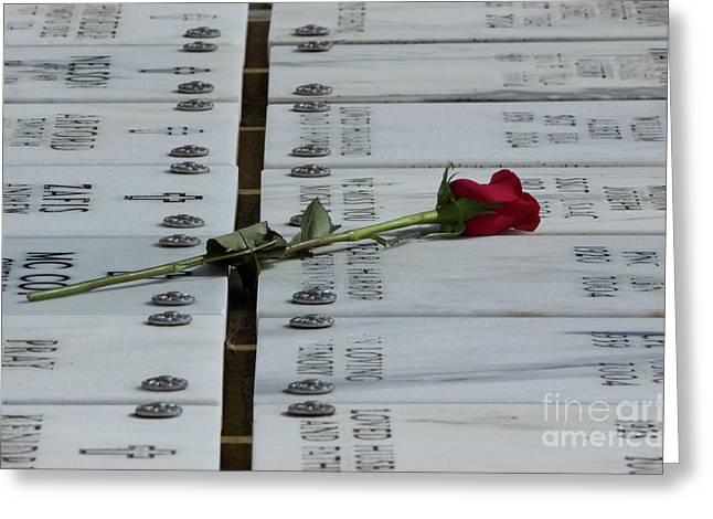 Red Rose Remembrance Greeting Card by Marta Robin Gaughen