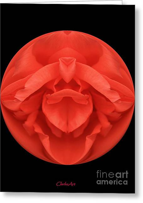 Red Rose Sphere Greeting Card