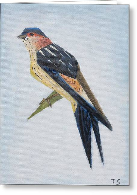 Red-rumped Swallow Greeting Card by Tamara Savchenko