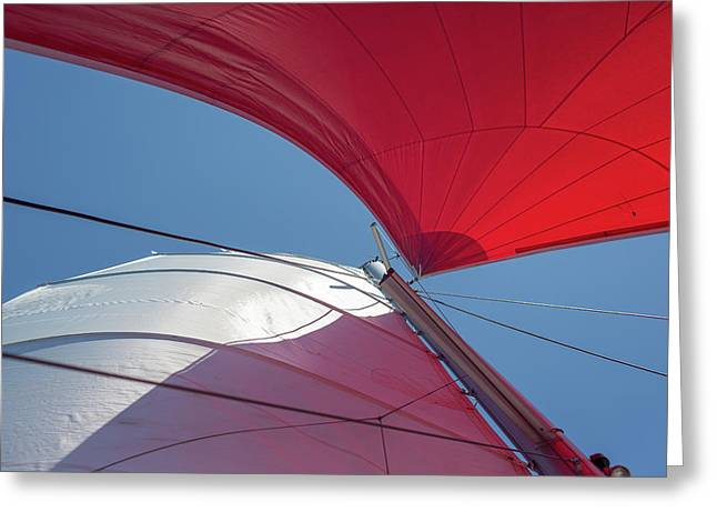 Greeting Card featuring the photograph Red Sail On A Catamaran 3 by Clare Bambers