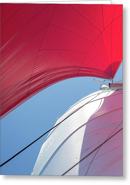 Greeting Card featuring the photograph Red Sail On A Catamaran 4 by Clare Bambers