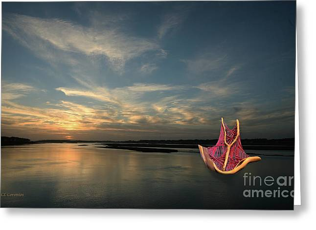 Greeting Card featuring the photograph Red Sails In The Sunset by Carol Lynn Coronios