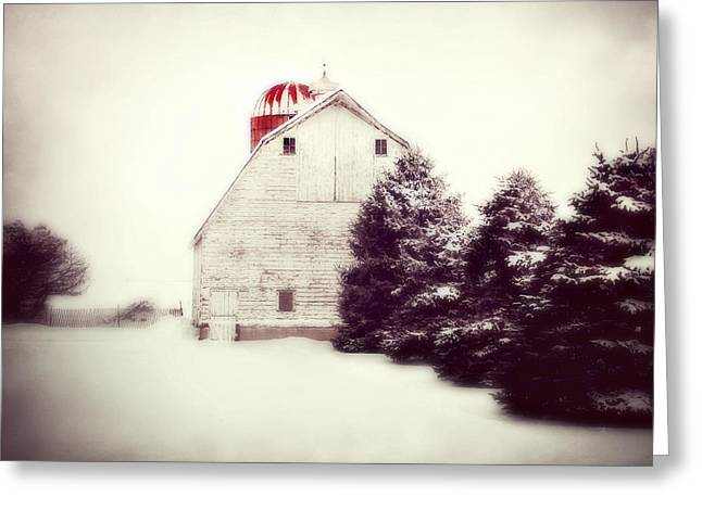 Red Silo Greeting Card by Julie Hamilton