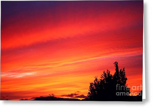 Greeting Card featuring the photograph Red Skies At Night  by Nick Gustafson