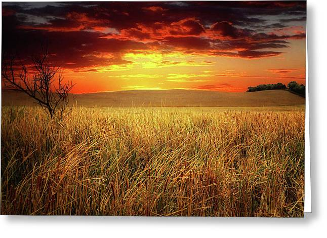 Red Skies Greeting Card