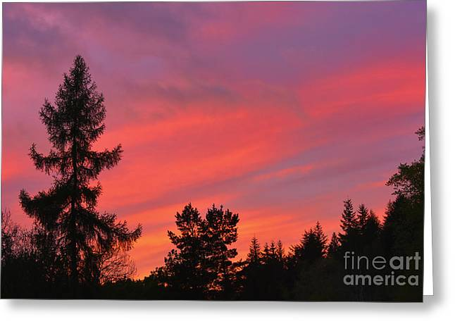 Red Sky At Night. Greeting Card by Stan Pritchard