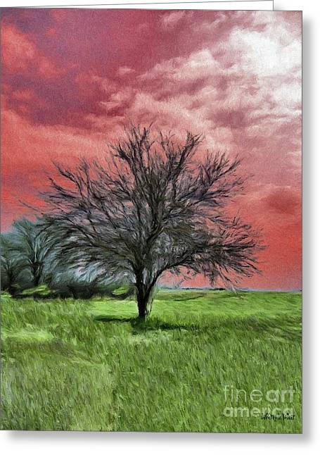 Red Sky Greeting Card by Jeff Kolker