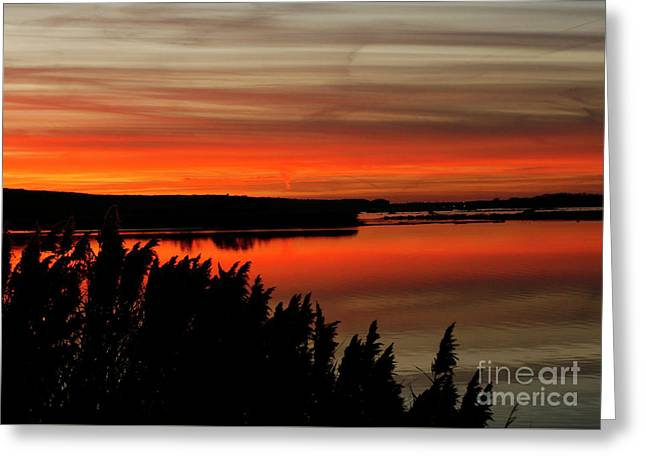 Red Sky On The Illinois River Greeting Card
