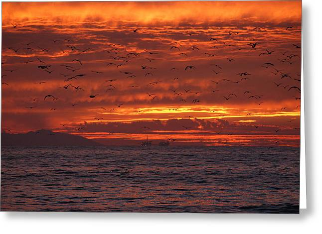 Red Sky  Greeting Card by Wendy  Coloma