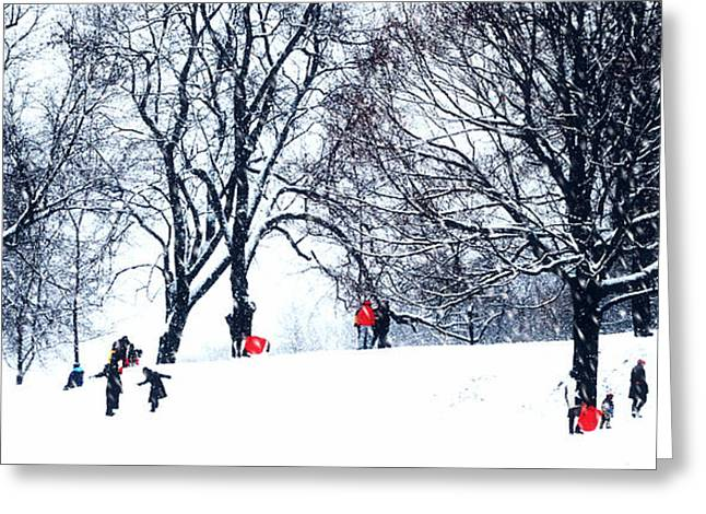 Red Sleds In Snow - Slim Horizontal Greeting Card