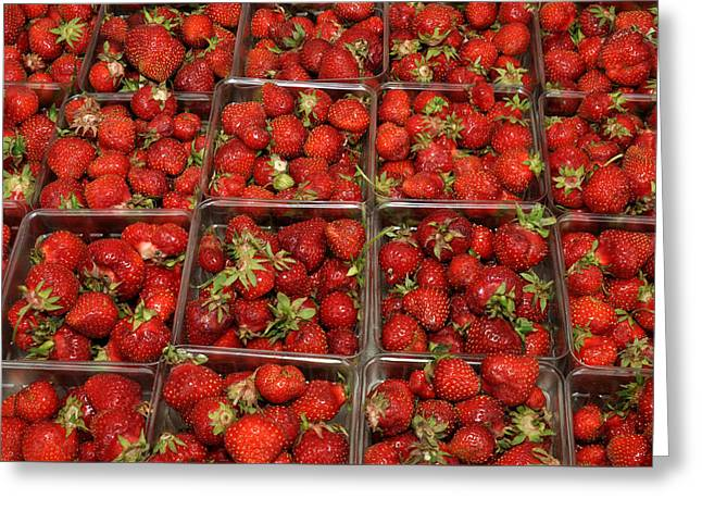 Union Square Market Red Strawberries Greeting Card by Diane Lent