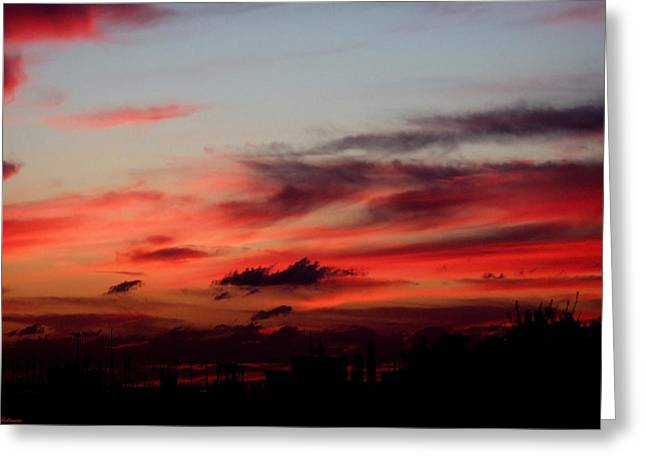 Red Sunset Greeting Card by Arik Baltinester