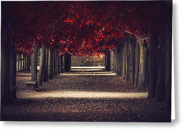 Red Surreal Path  Greeting Card by Sandra Rugina