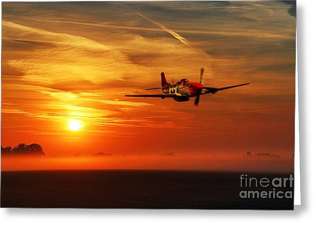 Red Tail Sunrise Greeting Card