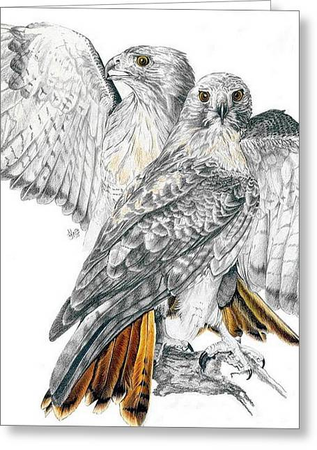 Red-tailed Hawk Greeting Card by Barbara Keith