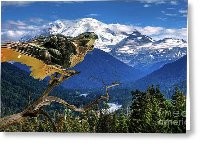 Red Tailed Hawk, Chinook Pass, Mt. Ranier Greeting Card