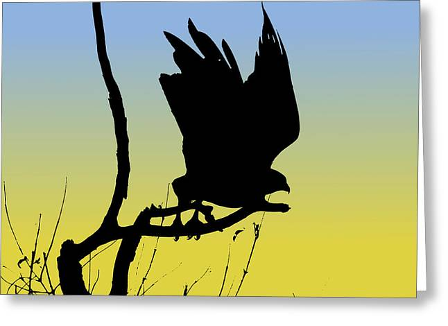 Red-tailed Hawk Taking Flight Silhouette At Sunrise Greeting Card by Marcus England