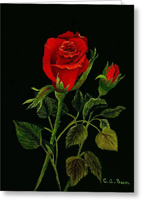 Red Tango Rose Bud Greeting Card