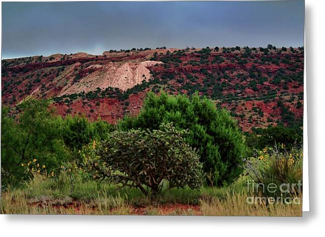 Greeting Card featuring the photograph Red Terrain - New Mexico by Diana Mary Sharpton
