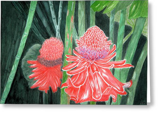 Red Torch Ginger Greeting Card