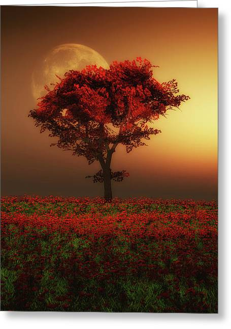 Red Tree In The Evening Greeting Card