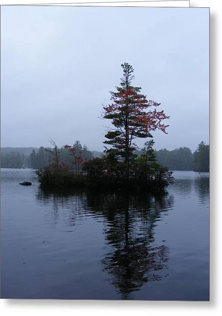 Red Tree Island Greeting Card by Alison Heckard