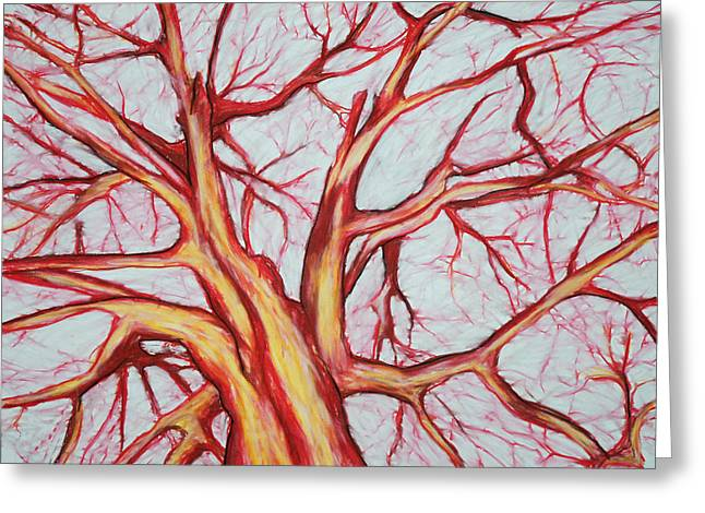 Red Tree Greeting Card by John Terwilliger