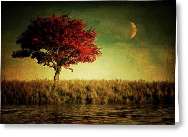 Red Tree With Moonrise Greeting Card