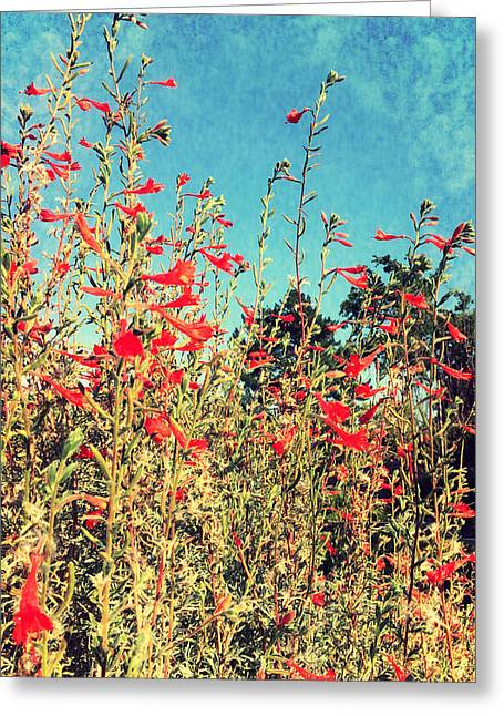 Red Trumpets Playing Greeting Card