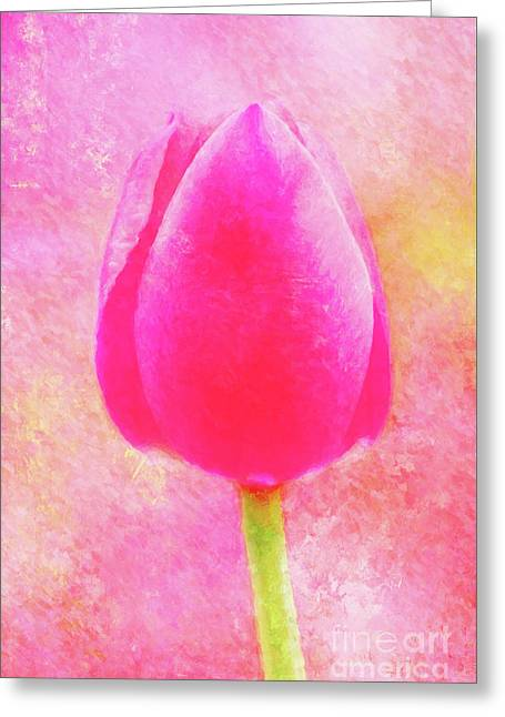 Red Tulip Dressed For Spring Greeting Card