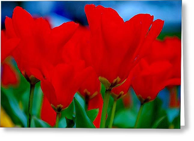 Red Tulips Greeting Card by JoAnn Lense
