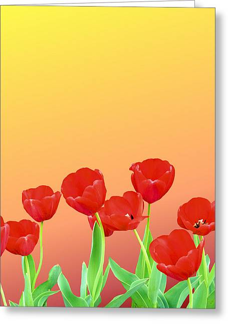 Red Tulips Greeting Card by Kristin Elmquist