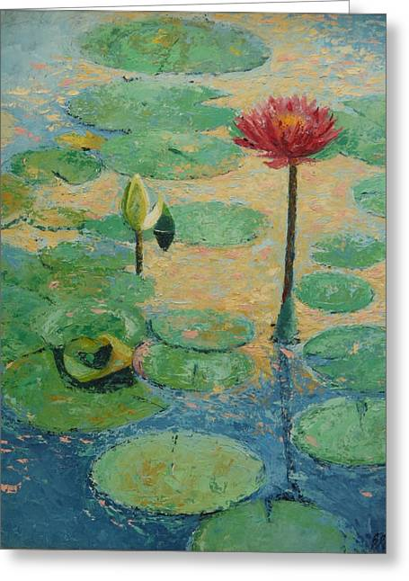 Red Waterlilly Greeting Card by William Rogers
