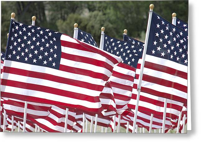 Red White And Blue Greeting Card by Jerry McElroy