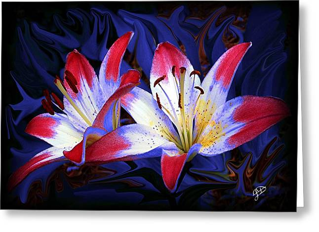 Red White And Blue Greeting Card by Jim  Darnall