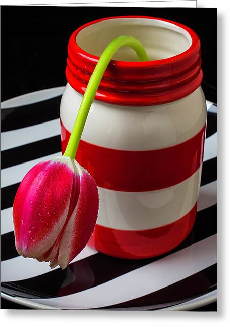 Red White Jar With Tulip Greeting Card by Garry Gay